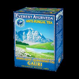 GAURI Himalájský Ájurvédský bylinný čaj 100g