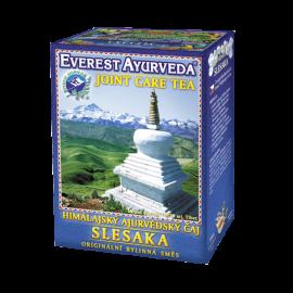 SLESAKA Himalájský Ájurvédský bylinný čaj 100g